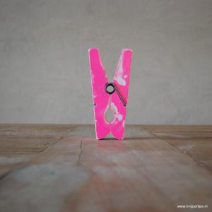 magneet wasknijper vintage roze magneetjeswinkel ede